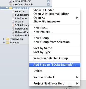 Projeye veritabanı dosyası ekleme
